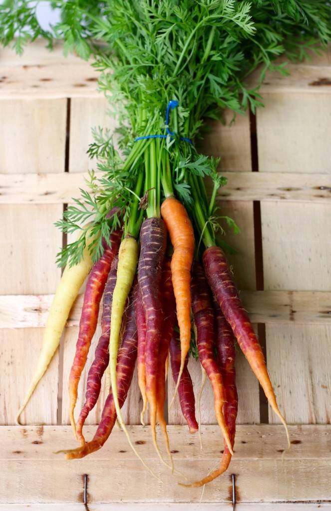 thumbnail_carrots-2608611_1920